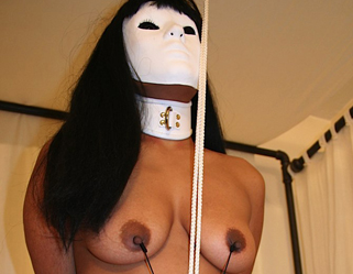 Nipple and vagina clamps  a girl in a mask is bound by her nipple and vagina clamps. A girl in a mask is bound by her nipple and cunt clamps